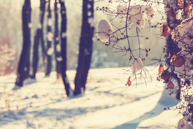 winterstille klein
